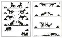 soluciones burro a b
